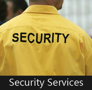 Proactive Security Services